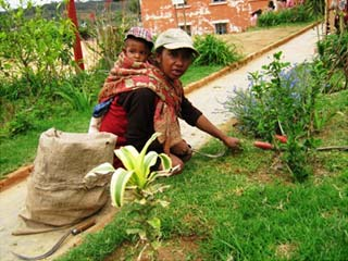 La jeune veuve et son enfant, nouvelle jardinière du Centre Akany Aina à Madagascar