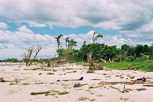 Ambodirafia ravagée par le passage du cyclone Indlalah