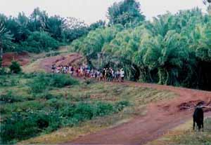 Voyage d'études, parc naturel Masoala à Madagascar