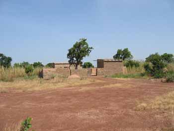 AVANT : La terre, aride et latéritique, est devenue stérile.