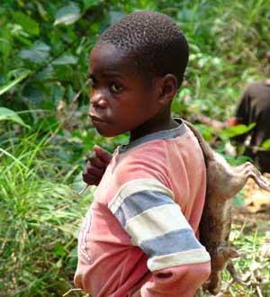 Jeune pygmée au retour de chasse dans son campement