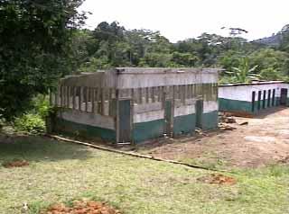 Porcherie et levage de porcs en milieu pygm e au cameroun - Comment construire une porcherie ...