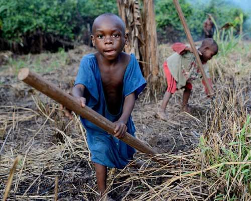 Défrichage de la brousse par les enfants Pygmées Bagyeli