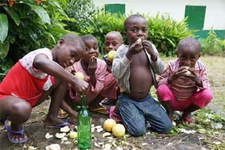 Fabrication maison de jus de pamplemousse par les jeunes Pygmées au Cameroun