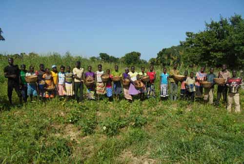 Les élèves de Namassa cultivent des haricots pour payer leurs cours de soutien scolaire au Bukina Faso