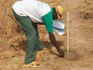 Terrain cédé à l'AZN par le village de Lindi, Burkina Faso