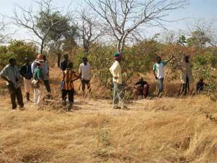 Terrain cédé à l'AZN par le village de Samissi, Burkina Faso