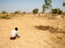 Défrichage des terrains cédés à l'AZN, Burkina Faso