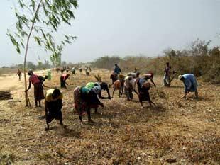 Arpentage des terrains cédés à l'AZN, Burkina Faso