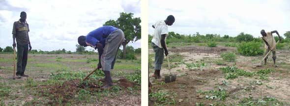Aménagement de la route de la Ferme Pilote de Goèma, Burkina Faso