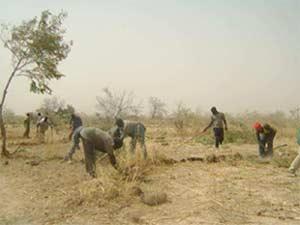 Défrichage du pare-feu, Ferme Pilote de Goéma, Burkina Faso