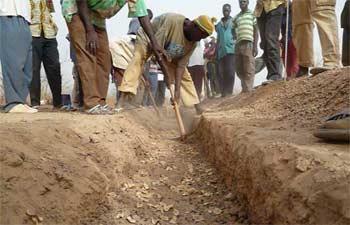 Semis direct dans une tranchée, Ferme Pilote de Goéma, Burkina Faso