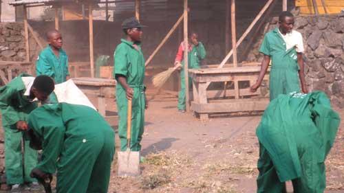 Apprentissage de la menuiserie à Goma, RD Congo