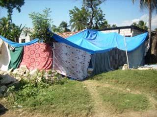 Campement de fortune à Port au Prince après le séisme du 12 janvier 2010 en Haïti