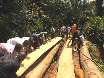 Construction d'un pont en brousse pour l'acheminement des matériaux pour la construction du Village Orange de Kabweke, Nord Kivu en RD Congo
