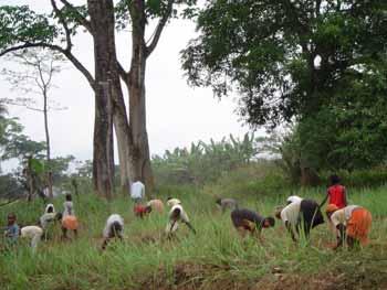 SOS Enfants et le village de Moya au Cameroun