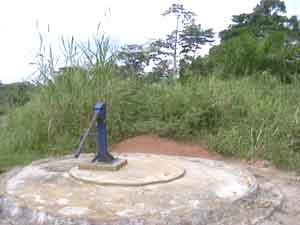 SOS Enfants et les Pygmées Bagyeli au Cameroun