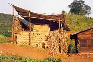 Hangar pour le séchage des briques