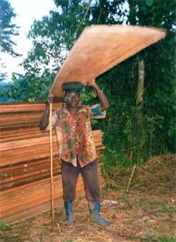 Transport des planches à dos d'homme