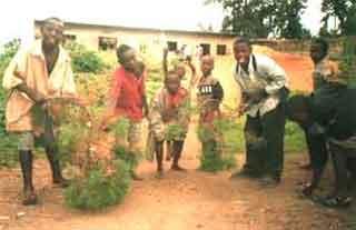 enfants des rues au Rwanda : balayage de la cour au moyen de branchages