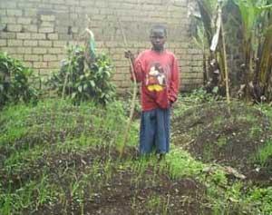 Des jardins potagers contre la malnutrition des orphelins du sida