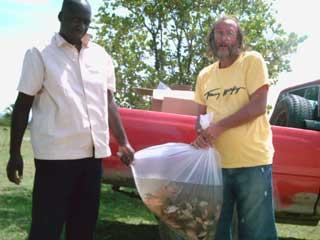 Transport des alevins de tilapias