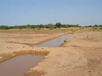Aux points bas du terrain, des mares ou bullis servent de retenues d'eau supplémentaire pour une meilleure irrigation.