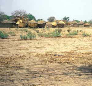 Processus de désertification : La terre, aride et latéritique, est devenue stérile.