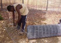 Protection des plantations contre la divagation du bétail