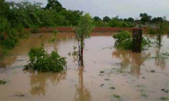 Inondation des champs au Sahel, Guiè, Burkina Faso