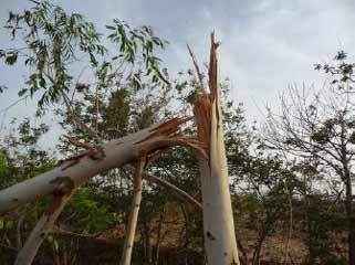 Dégâts après la tempête à Guiè, Burkina Faso