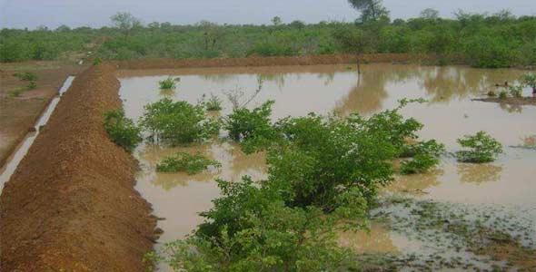 Mare ou bulli retenant l'eau de pluie au bas des champs, Ferme Pilote de Goèma, Burkina Faso