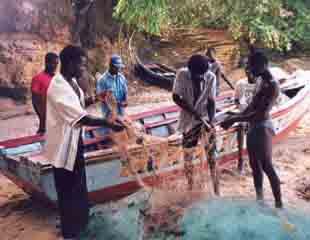 Pêche artisanale en Haïti : préparation de la barque et des filets
