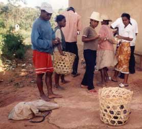 Elevage de canes pondeuses à Madagascar