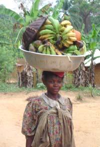 Production artisanale d'huile de palme au Cameroun