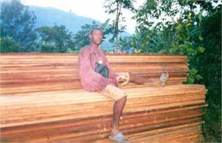 Stockage des planches en forêt