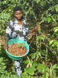 Microcrédit pour activité génératrice de revenus