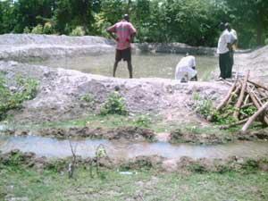 Le deuxième bassin d'élevage rempli d'eau