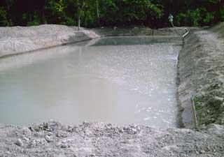 Le premier bassin de tilapia rempli d'eau
