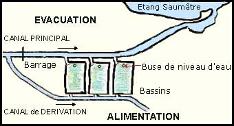 Schéma de la circulation d'eau